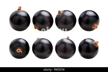 Black currants. Ripe juicy berries of black currant isolated on white background - Stock Photo