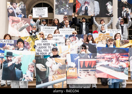 New York, USA. 27th November, 2018. Protest advocating that New York City enforce existing health code regulations to stop the custom of using live chickens in the Jewish ritual of Kapparot / Kaporos. The protest was sponsored by the group 'Alliance to End Chickens as Kaporos'. The group wishes to promote the use of money instead of live chickens in the ritual. Credit: Michael Brochstein/Alamy Live News - Stock Photo