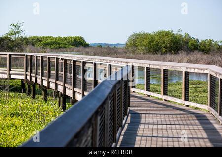 Nobody on wooden boardwalk bridge in marsh swamp in Paynes Prairie Preserve State Park in Gainesville, Florida - Stock Photo