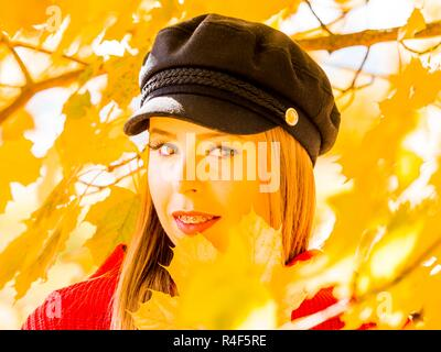 Intensive vivid Yellow color on Autumn Fall season tree forest leaves - Stock Photo