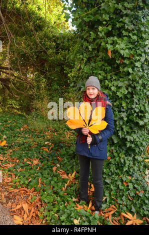 young woman holds a large yellow horse chestnut leaf in autumn. - Stock Photo