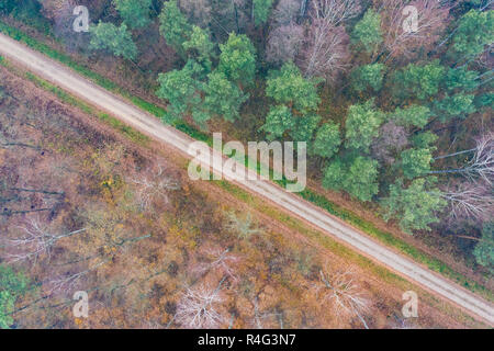 road among autumn trees - view from above - Stock Photo