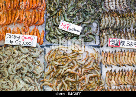 Noryangjin Fisheries Wholesale Market , Expansive wholesale & retail market with stalls offering hundreds of types of fish & seafood. - Stock Photo