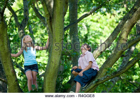 A young boy and girl climbing a tree, looking up - Stock Photo