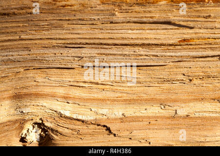 old split wood - Stock Photo
