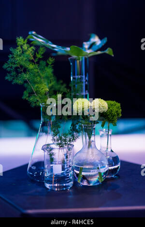 DIY flowers & green plants in glass beakers for interior decoration - Stock Photo
