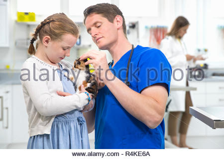 Vet examining pet kitten cat in surgery with child owner - Stock Photo