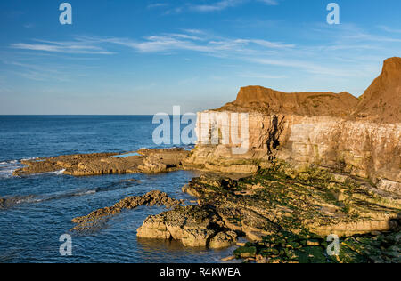 Chalk Cliffs at Thornwick Bay Flamborough Head East Riding of Yorkshire England - Stock Photo