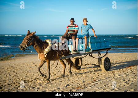 CAIRU, BRAZIL - CIRCA FEBRUARY, 2018: A mule pulls a wooden cart along the shore of a northeastern beach. - Stock Photo