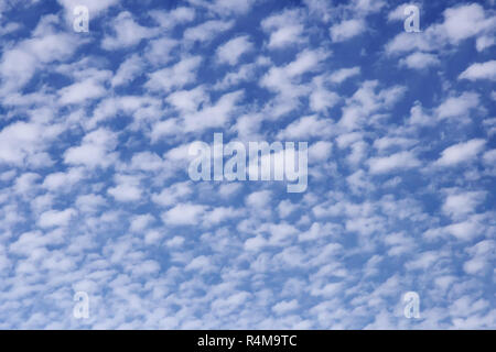 blue sky and white fluffy clouds. - Stock Photo