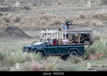 Lioness rests in shade of safari jeep in Maasai Mara, Kenya - Stock Photo