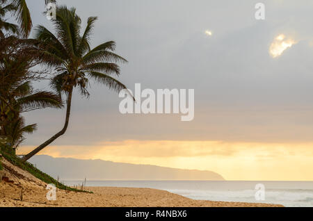Sun setting over the crooked palm tree, beach and waves on Sunset Beach on the north shore of Oahu, Hawaii, USA - Stock Photo