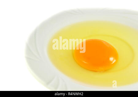 egg yolk isolated / fresh broken egg with yolk egg on white plate isolated on white background - Stock Photo