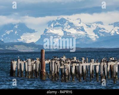 Old Pier (Muelle Historico) in Almirante Montt Gulf - Puerto Natales, Magallanes Region, Patagonia, Chile. - Stock Photo