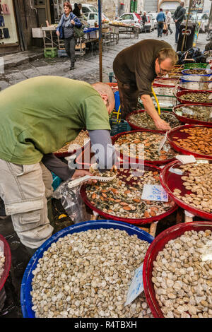 Fishmonger stall at Via Sopramuro, Mercato di Porta Nolana quarter, Naples, Campania, Italy - Stock Photo