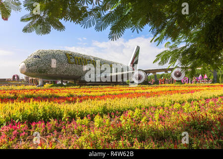DUBAI, UAE - NOV 12, 2018: Emirates Airbus A380 made of Flowers at Miracle Garden in Dubai. United Arab Emirates garden from Middle East has over 109