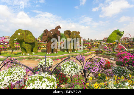 DUBAI, UAE - NOV 12, 2018: 3 (three) elephants and 2 (two) cats made of Flowers welcoming tourists at entrance at Miracle Garden in Dubai. United Arab