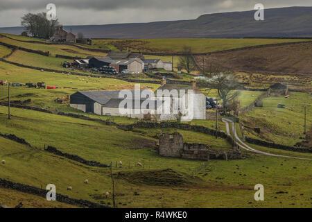 North Pennines AONB landscape, West Underhurth farm, Langdon Beck, Upper Teesdale - Stock Photo