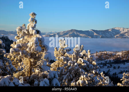 WA15370-00...WASHINGTON - The Chelan Mountains rising above the fog shrouded Lake Chalen from the Echo Ridge Nordic area in the Okanogan-Wenatchee Nat - Stock Photo