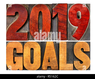 2019 goals banner - New Year resolution concept - isolated text in vintage letterpress wood type printing blocks - Stock Photo