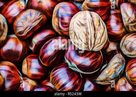close up ready for sale shelled walnuts and chestnuts in greengrocer - Stock Photo