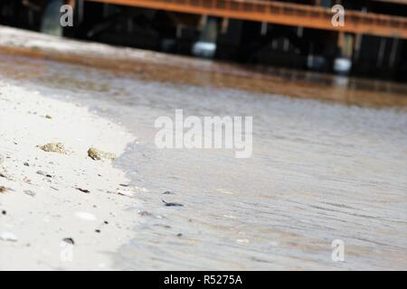 water lapping seashells on shore peacefully - Stock Photo