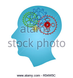 Brain works concept. Thinking, creativity concept of the human head with gears inside isolated over white background. - Stock Photo