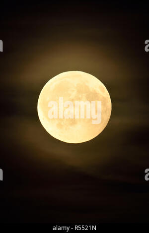 Full moon / Vollmond shining bright in dark night, amber moon with some few puffy, hazy clouds. - Stock Photo