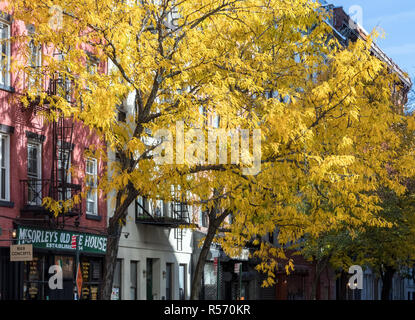 NEW YORK CITY, CIRCA 2018: The historic McSorley's Old Ale House stands under colorful fall trees along 7th Street in the East Village neighborhood of - Stock Photo