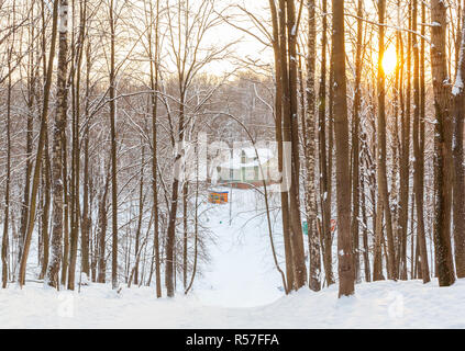 On the descent from the mountain near the ski base in the winter forest - Stock Photo