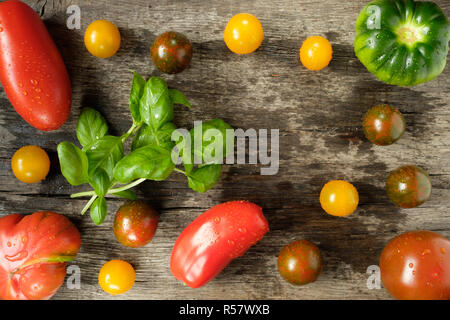 basil with different ripe varieties of tomatoes with water drops - Stock Photo