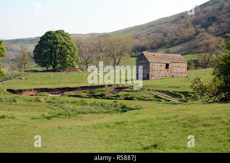A old barn in the scenic Wharfe River Valley on the Dales Way hiking trail, near Starbotton, Yorkshire, Northern England, Great Britain. - Stock Photo