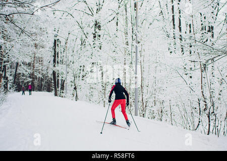 Nordic skier on the white winter forest covered by snow. - Stock Photo