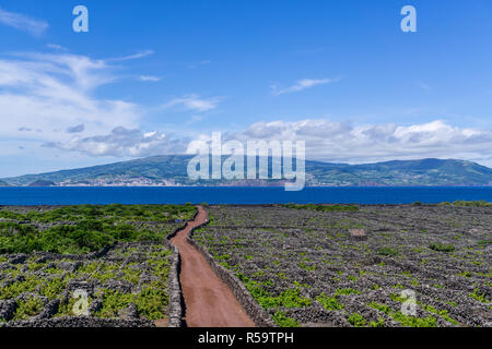 Old vineyards on Pico Island, with Faial Island in the background. Azores, Portugal - Stock Photo