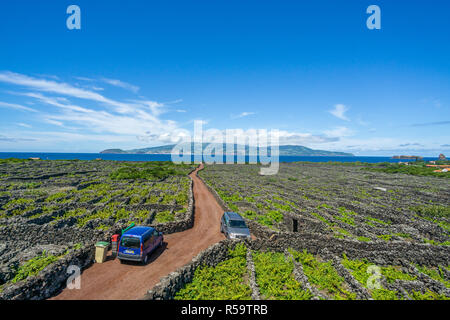 Old vineyards, Pico Island, Azores, Portugal - Stock Photo