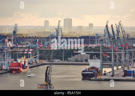 Container Port in Rotterdam - Stock Photo