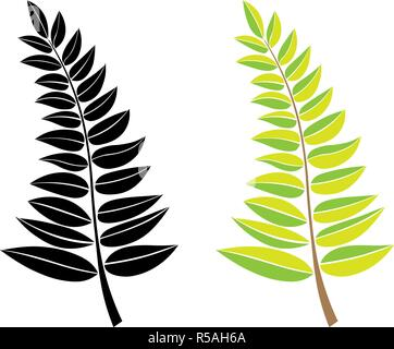 vector black and green silhouette of a branch with leaves. design element. Hand draw plant and tree branches with leaves. floral silhouettes. - Stock Photo