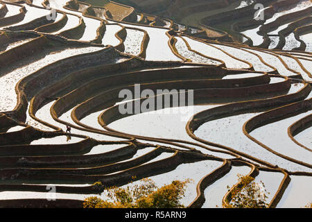 Reflections off water filled rice terraces, Yuanyang County, Honghe, Yunnan Province, China - Stock Photo