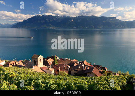 Switzerland, Vaud, Lavaux Vineyards, St. Saphorin Village and Lac Leman / Lake Geneva - Stock Photo