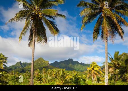 Rarotonga, Cook Islands, South Pacific - Stock Photo