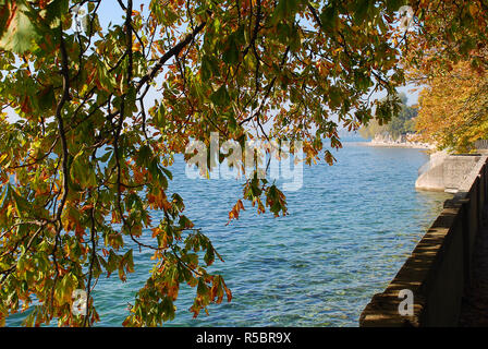 Coast of Lindau, Bodensee, Germany. Position in Lindau 'Schützingerweg'. In the distance the mountains of Austria und Switzerland - Stock Photo