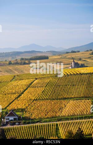 France, Haut-Rhin, Alsace Region, Alasatian Wine Route, Ribeauville, vineyard view, autumn - Stock Photo