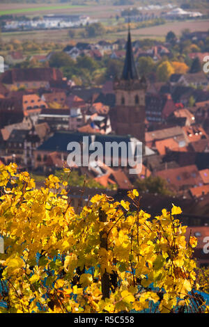 France, Bas-Rhin, Alsace Region, Alasatian Wine Route, Obernai, town overview from vineyards, autumn - Stock Photo