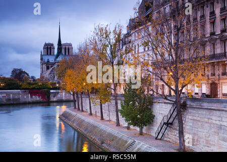 France, Paris, Cathedral Notre Dame cathedral and Ile St-Louis, dawn - Stock Photo