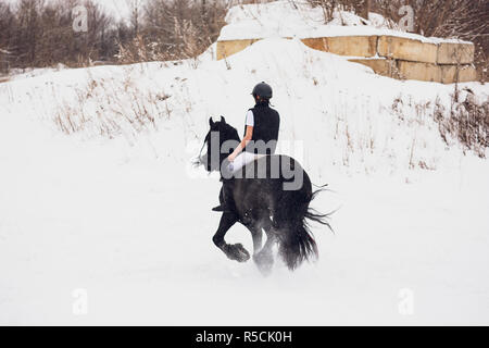Friesian stallion running in winter field. Rider young girl is riding gallop on horse in snow, in background forest. Concept horseback riding - Stock Photo