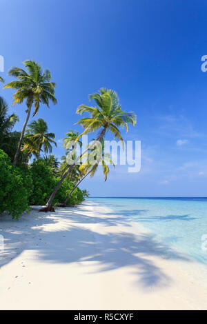Maldives, Faafu Atoll, Filitheyo Island - Stock Photo