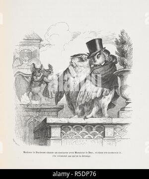 """Madame la Duchesse chante un nocturne avec Monsieur le Duc, et dans ces moments la, elle n'entend pas qu'on la derange. Anthropomorphic image of bats and owls. Peines de cÅ""""ur d'une chatte anglaise.-Guide-aÌ'ne aÌ€ l'usage des animaux qui veulent parvenir aux honneurs.-Voyage d'un lion d'Afrique aÌ€ Paris.-Les Amours de deux beÌ'tes. In: Stahl (P. J.) pseud. SceÌ€nes de la vie priveÌe des animaux ... EÌtudes de mÅ""""urs contemporaines publieÌes sous la direction de M. P. J. Stahl, avec la collaboration de Messieurs de Balzac, L. Baude, etc. 1842. 1842. Source: 1457.k.1. plate opposite page 32"""