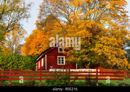 Traditional red farm house in Sigtuna's countryside, Marsta, Sweden. - Stock Photo