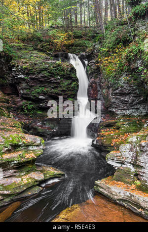 Adams Falls, one of many beautiful waterfalls in Pennsylvania's Ricketts Glen State Park, splashes through a rocky ravine in autumn. - Stock Photo