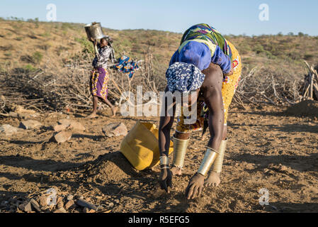 Mucubale women working in the field collecting sheep dung to use it as fertiliser. One of them carry her baby on her back while working. - Stock Photo